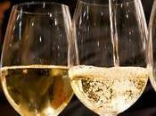Vigne Roma, imprese vinicole Lazio Taste Roma
