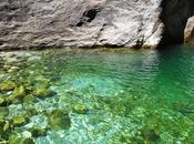 Cascate Malbacco: polle naturali verde Seravezza