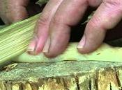 bambù, alternativa asiatica alle lame pietra