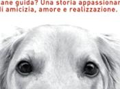 Segnalazione ATTRAVERSO MIEI PICCOLI OCCHI Emilio Ortiz