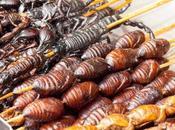 primo gennaio 2018 anche Italia mangeranno insetti
