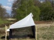 Germania: perso della biomassa degli insetti alati!