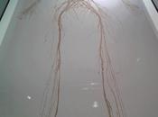 Meraviglia Sistema Nervoso