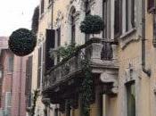 guarda cosa trova nelle vetrine Milano! Look what find windows shops Milan