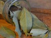 Perche' conviene coltivare proprie erbe aromatiche