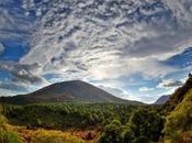 Festa dell'Albero Vesuvio: nuovi alberi dopo roghi. Come partecipare