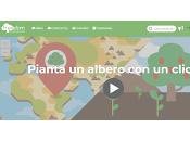 'Treedom.net', pianta albero click!
