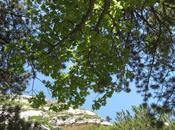 Itinerari viaggio Abruzzo: l'eremo Santo Spirito nella valle dell'Orfento, Majella