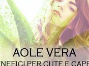 Shampoo Aloe Vera: Benefici cute capelli