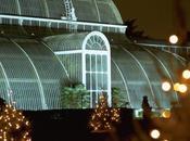 Mercatini Natale festival Gran Bretagna: quali vedere, dove perchè