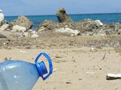 Inquinamento mare, plastica un'invasione