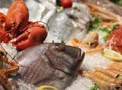 Pesci, molluschi crostacei: piccola guida alla scelta