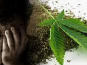 Cannabis depressione Rivista Psichiatrica