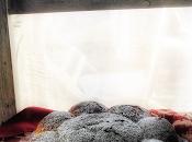 Dreikönigskuchen ovvero torta magica dell'Epifania...e davvero!