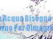 Quanta Acqua Bisogna Bere Giorno Dimagrire?