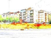 Papaveri città