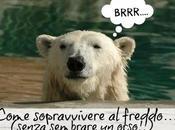 Come sopravvivere freddo… senza sembrare orso!!