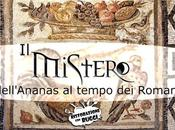 L'enigma dell'Ananas all'epoca dell'antica Roma