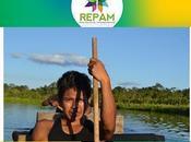 Sinodo sull'Amazzonia/Repam:scelta consulenti vista lavori preparatori