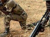 Ue:100milioni euro stanziati lotta terrorismo Sahel