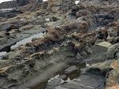 Viaggio Fuerteventura: posti spiagge belle visitare sull'isola
