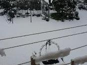 Nuovo...Neve!