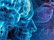 Epilessia farmaco-resistente. cannabidiolo dimezza crisi