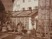 1800 aranci ananas venivano coltivati Bolzano.