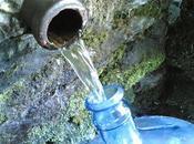 H2O, implicazioni