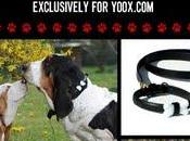 Moschino Pets Exclusively yoox.com