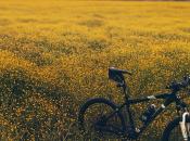 Golosa bike: eccellenze gastronomiche natura