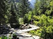 Spluga invita passeggiata Alpi
