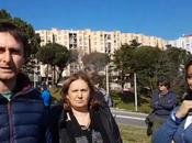 Video. Siamo andati vedere fine hanno fatto alberi piantati campagna elettorale