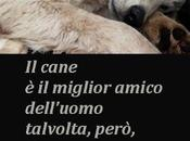 cane...