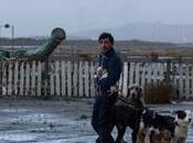 """Dogman"": neorealismo contemporaneo Garrone"
