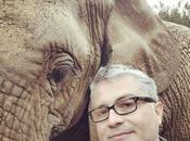 Sudafrica road: anche elefanti hanno un'anima