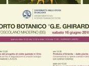 """Festa solstizio d'estate negli orti botanici della lombardia orto botanico """"g.e.ghirardi"""" toscolano maderno"""