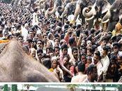 Tempio degli elefanti