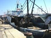 Trattative accordo Mauritania-Senegal tema pesca