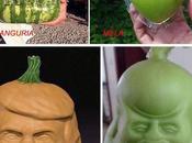 Frutta modificata nella forma.