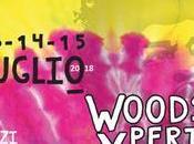 rievocazione storica Woodstock