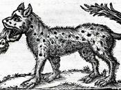 bestia Cusago, lupa divenne antropofaga