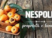 Nespole: proprietà, benefici controindicazioni
