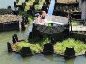 Rotterdam: Dalla plastica, un'isola verde città!