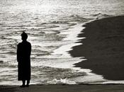 voluto solitudine