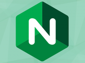 Getting yourself into trouble with NGINX caching reverse proxy rewritten URLs