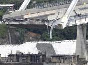 tragedia Genova schifo vergogna politica amministratori