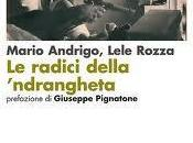 """radici della 'ndrangheta"""": libro spiegati codici, riti simboli dell'organizzazione criminale"""