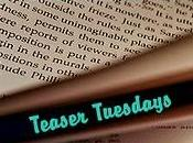 Teaser Tuesdays (21)