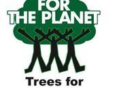 Stop talking, start planting!